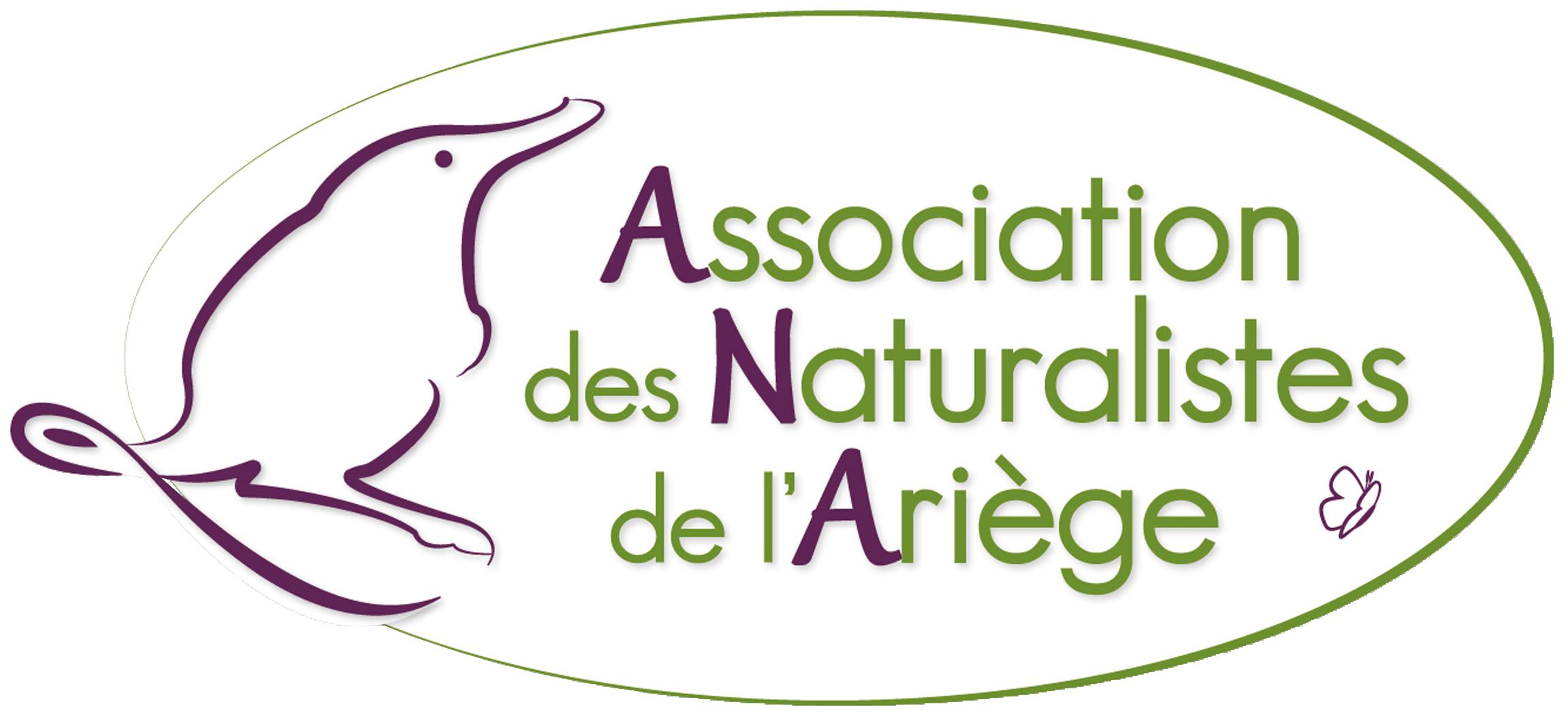 logo_ana2013
